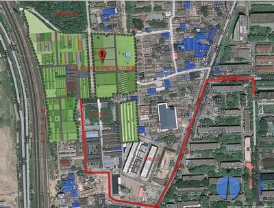 北京林业大学绿色新闻网