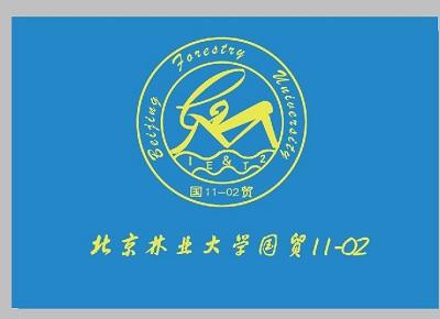 19班班徽设计图案大全初中展示