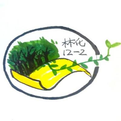 高中校运会班旗设计图案展示