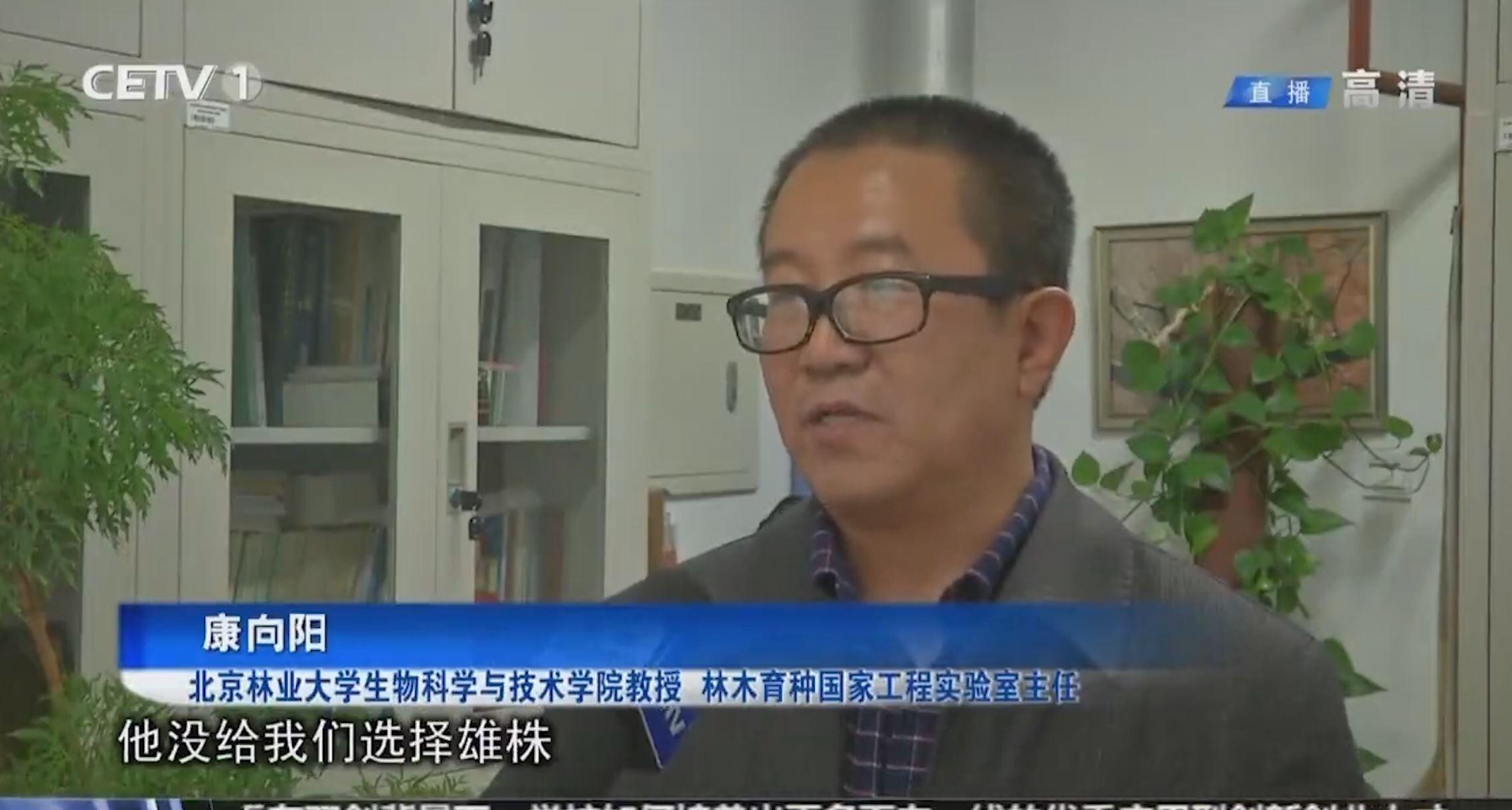 视频新闻第361期:中国教育电视台报道我校教授谈杨柳风絮